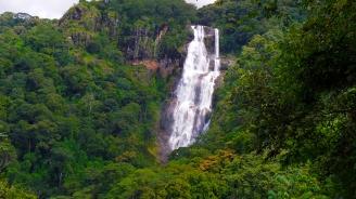 Tansania wildlife safari in Mikumi National Park and in Udzungwa Rainforest. Tansanian safari Mikumin luonnonpuisto ja Udzungwa sademetsän retki.